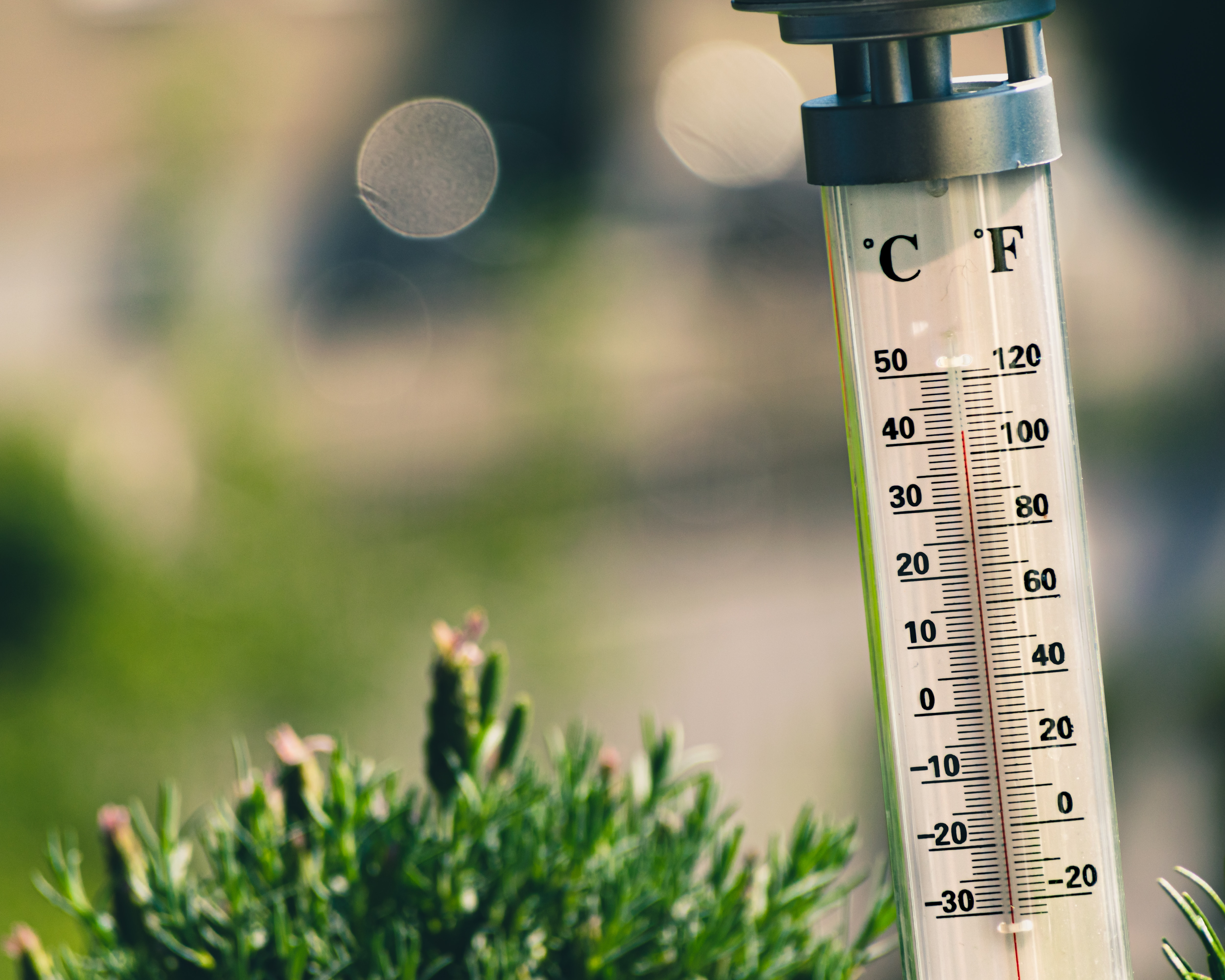 Thermometer to help you cope with the virus